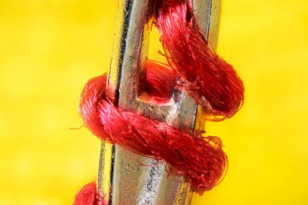 Fotografía macro de una aguja de coser