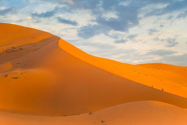 duna desierto sahara