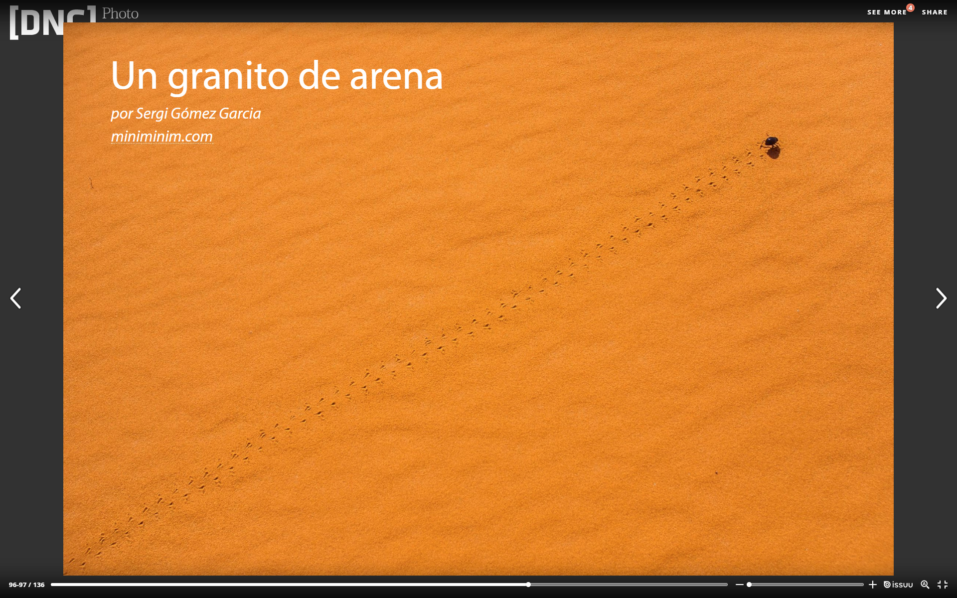 UN GRANO DE ARENA -DNG PHOTO MAGAZINE